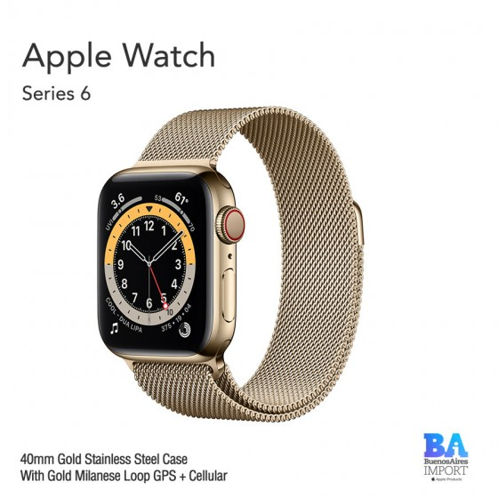 Apple Watch 40mm [SERIES 6]  Gold Stainless Steel Case With Gold Milanese...